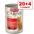 20 + 4 в подарок! 24 x 400 г Animonda Carny Adult