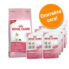За проба: 400 г Royal Canin Kitten суха храна + 12 x 85 г Royal Canin Instinctive