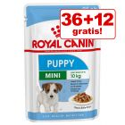 36 + 12 gratis! 48 x 85 g Royal Canin Mini