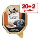 20 + 2 gratis! 22 x 85 g Sheba Craft Collection Tăvițe cu  Pate