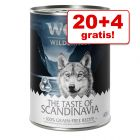 20 + 4 gratis! 24 x 400 g Wolf of Wilderness vådfoder
