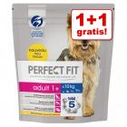 1 + 1 gratis! 2 x 1,4 kg Perfect Fit Small Dogs