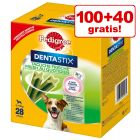 100 + 40 gratis! 140 x Pedigree Dentastix Fresh