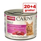 20 + 4 gratis! Animonda Carny Adult, 24 x 200 g