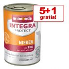 5 + 1 gratis! Animonda Integra Protect, tacki/puszki, 6 x 150/400g