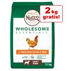 9 + 2 kg gratis! 11 kg Nutro Wholesome Essentials Huhn & Reis