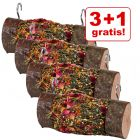 3 + 1 på köpet! 4 st Mr Woodfield Roll 'n' Fun Nibble Log