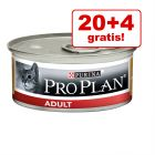 20 + 4 på köpet! 24 x 85 g Pro Plan Cat Adult