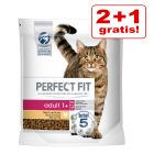 2 + 1 på köpet! 3 x 1,4 kg / 2,8 kg Perfect Fit kattfoder