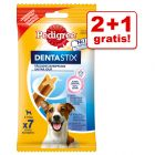 2 + 1 på köpet! 3 x Pedigree Dentastix Oral Care/Fresh Daily