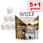 5 + 1 på köpet! Wolf of Wilderness