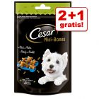 2 + 1 zdarma! 3 x 75 / 100 g Cesar Mini Snacks