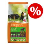 10% korting! 10 kg Burgess Excel Adult Guinea Pig Nuggets with Mint Caviavoer