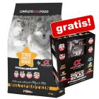 9,45 kg / 12 kg Alpha Spirit + Sticks Mixbox All 6 Tastes gratis!