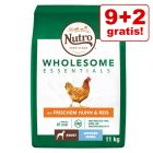 9 kg + 2 kg gratis! 11 kg Nutro Wholesome Essentials Adult