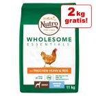 9 kg + 2 kg zdarma! 11 kg Nutro Wholesome Essentials Adult granuly