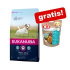 3 kg Eukanuba + 2 x 80 g 8in1 Fillets Pro Dental Hundesnacks gratis!