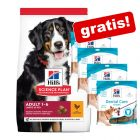 18 kg Hill's Science Plan + 4 x 170 g snack Dental Care gratis!