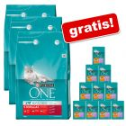 9 kg Purina ONE + Purina ONE Sensitive, saszetki, 12 x 85 g gratis!