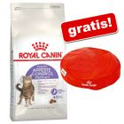10 kg Royal Canin Feline + Cuscino Royal Canin gratis!