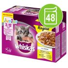 Экономупаковка Whiskas Junior ассорти из птицы в желе 48 x 85 г