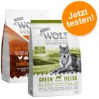 Wolf of Wilderness Senior próbacsomag 2 x 1 kg