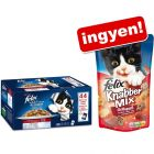 44 x 100 g Felix Fantastic + 60 g Felixs Party Mix Grill Fun ingyen!
