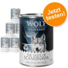 6 x 400 g Wolf of Wilderness zum Probierpreis