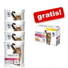 4 x 1,4 kg Perfect Fit Droogvoer + 48 x 85 g Perfect Fit Natvoer gratis!
