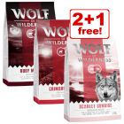 3 x 1 kg Wolf of Wilderness Adult Classic