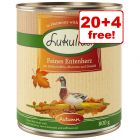 24 x 800g Lukullus Seasonal Menu Wet Dog Food - 20 + 4 Free!*