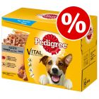 144 x 100g Pedigree Dog Pouches - 114 + 30 Free!*