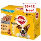 48 x 100g Pedigree Wet Dog Food Pouches - 36 + 12 Free!*