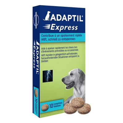 ADAPTIL® Express Tablets