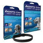 Adaptil uklidňující obojek pro psy