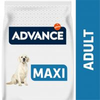 Advance Maxi Adult frango e arroz