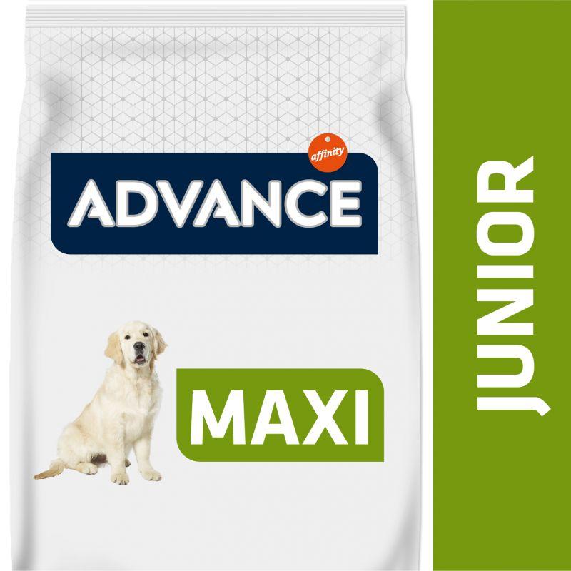 Advance Maxi Junior con pollo