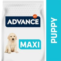 Advance Maxi Puppy Protect