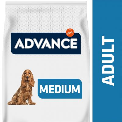 Advance Medium Adult frango e arroz