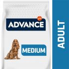 Advance Medium Adult pour chien