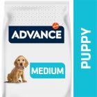Advance Medium Puppy Protect pour chiot