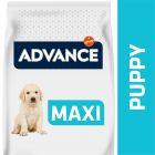 Advance Puppy Maxi pollo y arroz