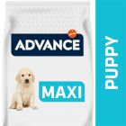 Advance Puppy Protect Maxi pollo y arroz