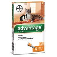 Advantage® 40 soluzione spot-on gatti e conigli da 0 a 4 kg