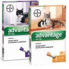 Advantage® soluzione spot-on per gatti e conigli