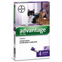 Advantage® 80 soluzione spot-on per gatti e conigli > 4 kg