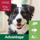 Advantage® 250 voor Honden 10 - 25 kg