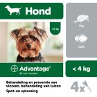 Advantage® 40 voor Honden tot 4 kg