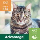 Advantage® 40 voor Katten tot 4 kg