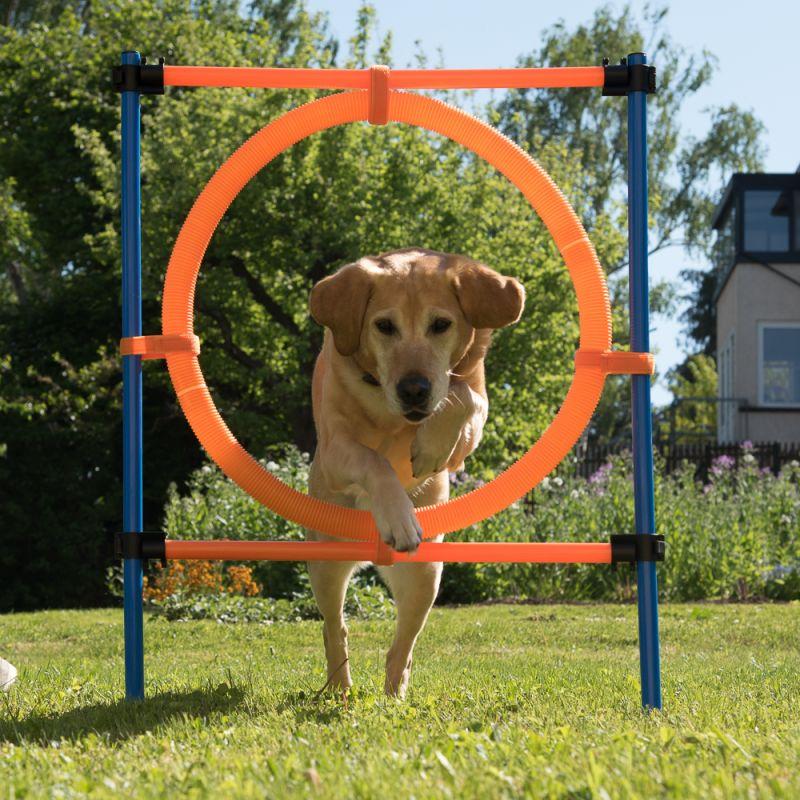 Agility Fun & Sport Jumping Hoop